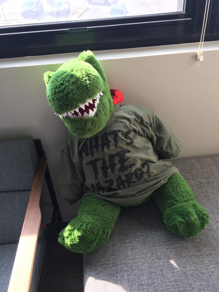 stuff dino wearing wth shirt